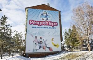 Kartalkaya dörtdivan kayak kiralama